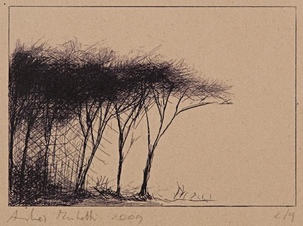 "carbone su Annigoni; foglio 24,8x35 lastra 9,5x13,8. Punta, carta vetrata"" href=""/public/boscaglia_.jpg"" rel=""lightbox[roadtrip]"">"
